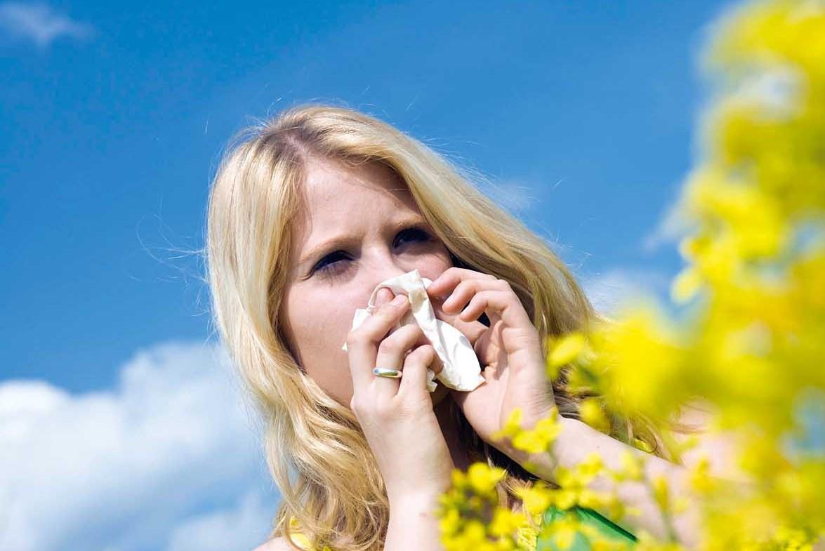 Tisana-Allergia-Stop-Plus